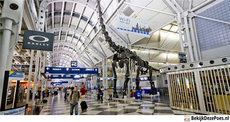 8. O'Hare International Airport