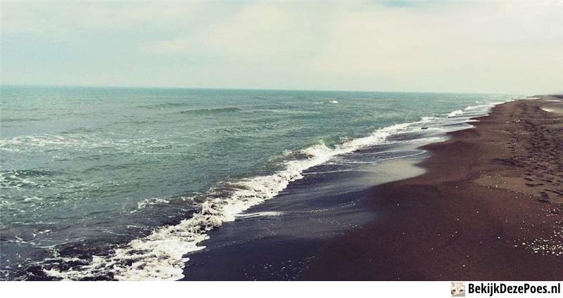1. Kaspisches Meer