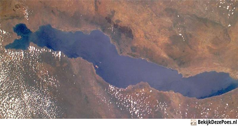 9. Malawisee