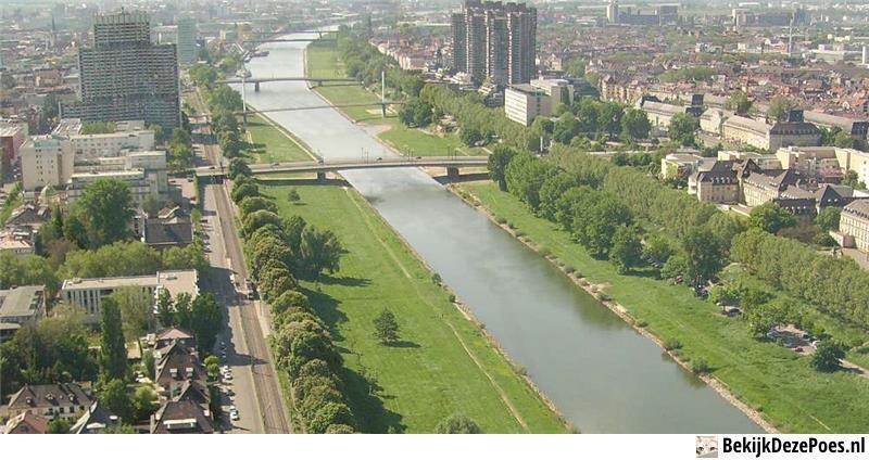 9. Neckar