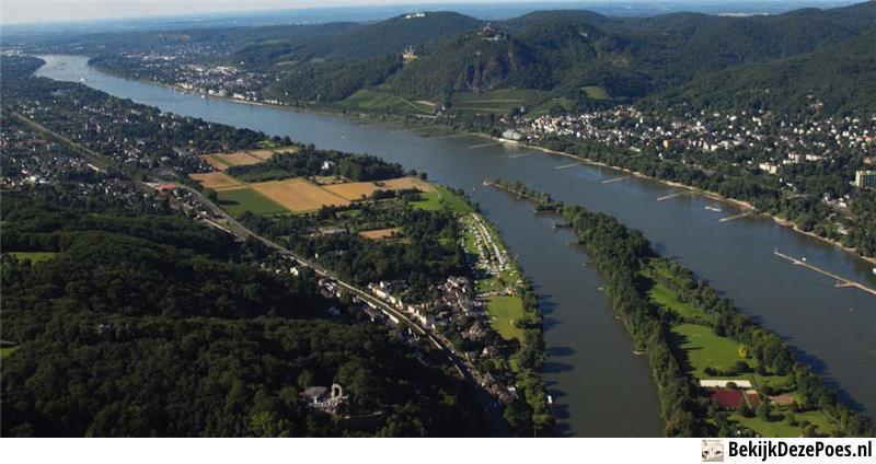 1. Rhein