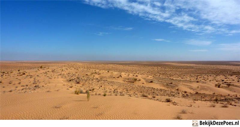 3. Sahara
