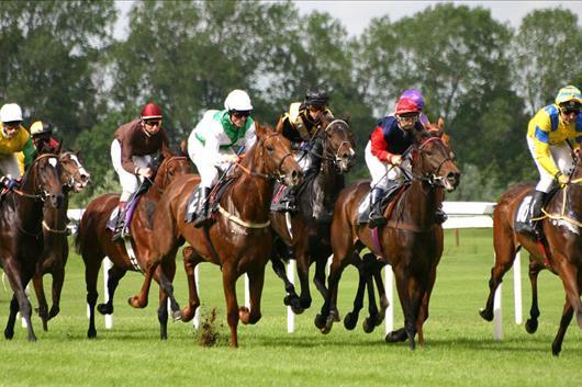 Top 10 Der Schnellsten Rennpferde